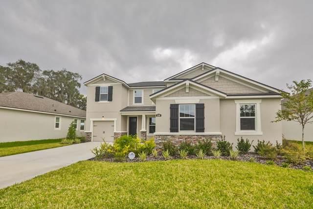11508 Blue Woods Drive #118, Riverview, FL 33578 (MLS #T3157963) :: Griffin Group