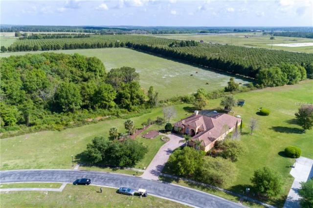 34201 Kentucky Derby Place, Dade City, FL 33525 (MLS #T3159787) :: The Duncan Duo Team