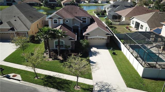 3402 Diamond Falls Circle, Land O Lakes, FL 34638 (MLS #T3159951) :: Premium Properties Real Estate Services