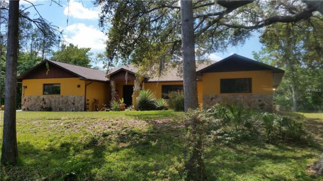 5541 Antelope Lane, New Port Richey, FL 34653 (MLS #T3163168) :: The Duncan Duo Team
