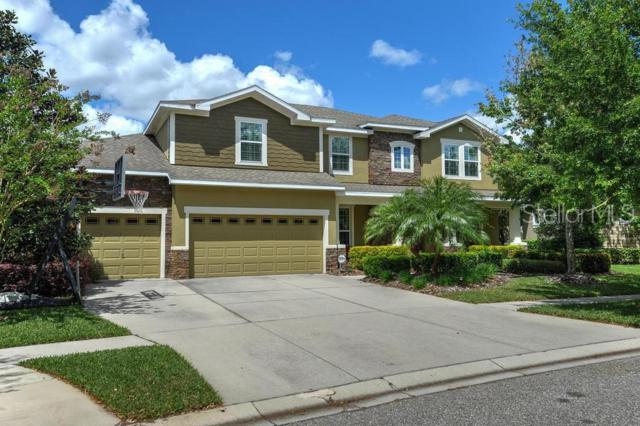 15940 Ternglade Drive, Lithia, FL 33547 (MLS #T3164779) :: The Duncan Duo Team