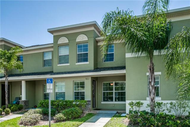 9811 Trumpet Vine Loop, Trinity, FL 34655 (MLS #T3167524) :: Cartwright Realty
