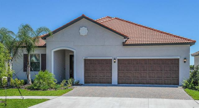16833 Banner Shell Place, Wimauma, FL 33598 (MLS #T3167711) :: Lockhart & Walseth Team, Realtors