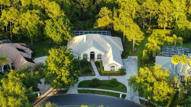 8950 Magnolia Chase Circle, Tampa, FL 33647 (MLS #T3167724) :: Florida Real Estate Sellers at Keller Williams Realty