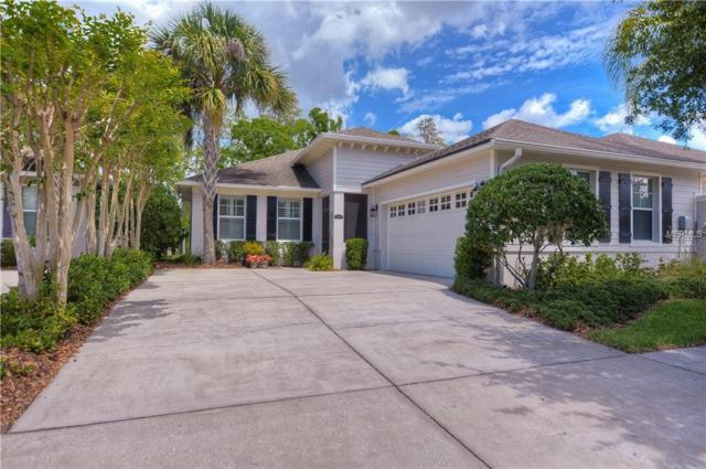6807 Lockington Court, Tampa, FL 33625 (MLS #T3168195) :: Lovitch Realty Group, LLC