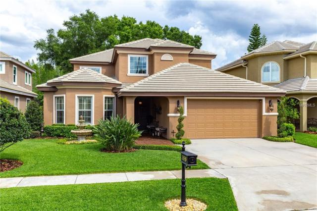 5318 Avenal Drive, Lutz, FL 33558 (MLS #T3170578) :: Andrew Cherry & Company