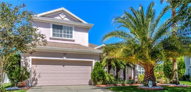 10761 Banfield Drive, Riverview, FL 33579 (MLS #T3171978) :: Medway Realty