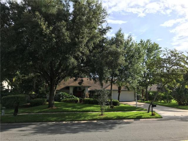 16147 Vanderbilt Drive, Odessa, FL 33556 (MLS #T3172276) :: The Duncan Duo Team