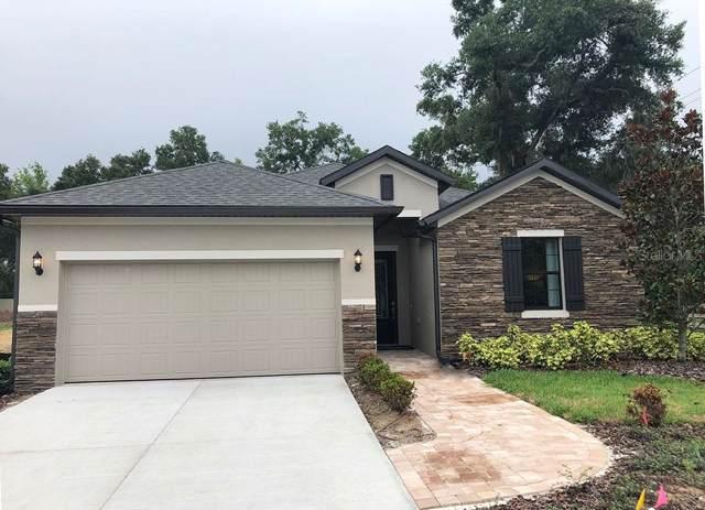 105 Elina Sky Drive, Seffner, FL 33584 (MLS #T3173610) :: Burwell Real Estate