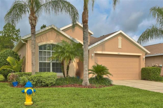 3123 Banyan Hill Lane, Land O Lakes, FL 34639 (MLS #T3174218) :: Griffin Group