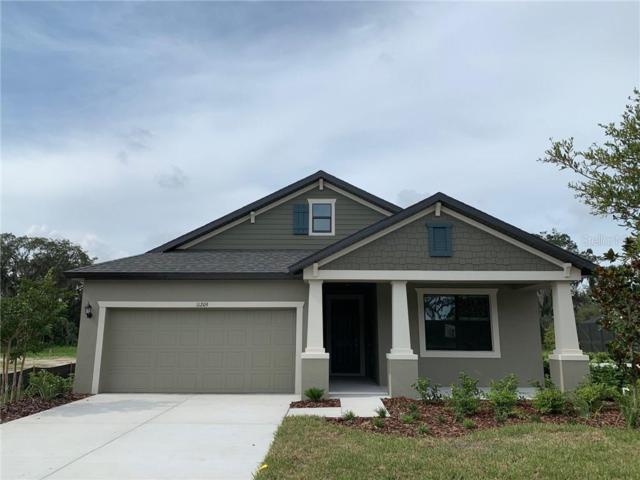 11209 Paddock Manor Avenue, Riverview, FL 33569 (MLS #T3175640) :: Charles Rutenberg Realty