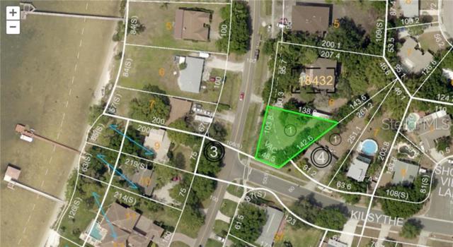 Shore Drive E, Oldsmar, FL 34677 (MLS #T3177486) :: The Figueroa Team