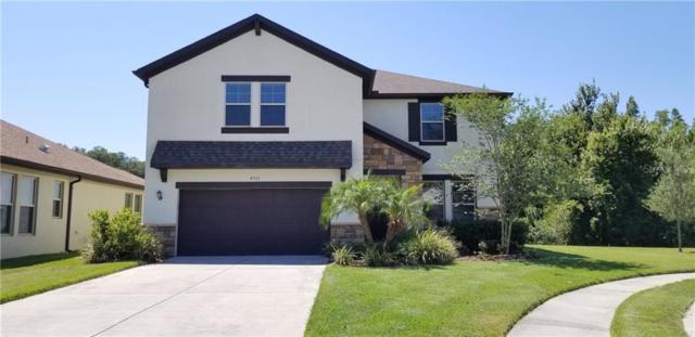 4961 Rolling Greene Drive, Wesley Chapel, FL 33543 (MLS #T3178035) :: Ideal Florida Real Estate