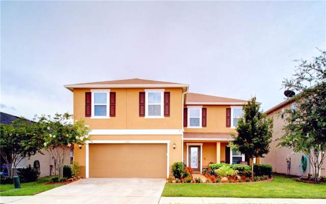 10601 Massimo Drive, Wimauma, FL 33598 (MLS #T3181870) :: Dalton Wade Real Estate Group