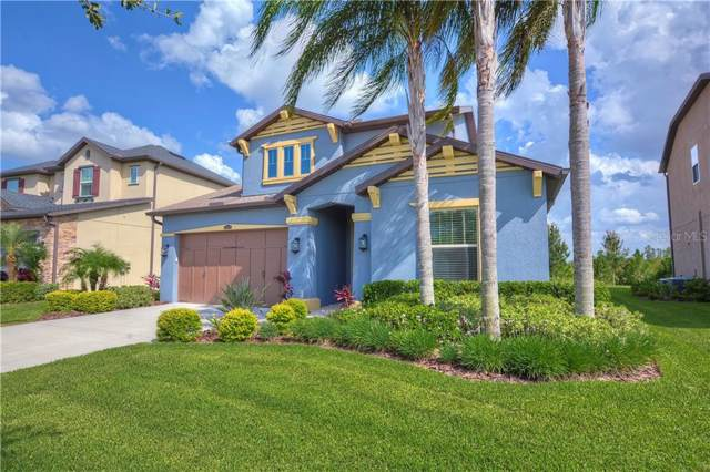 29016 Perilli Place, Wesley Chapel, FL 33543 (MLS #T3181919) :: Griffin Group