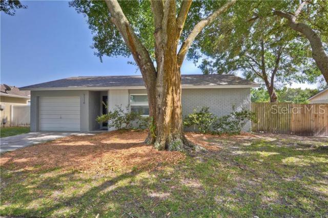 5116 Chatsworth Avenue, Tampa, FL 33625 (MLS #T3182604) :: CENTURY 21 OneBlue