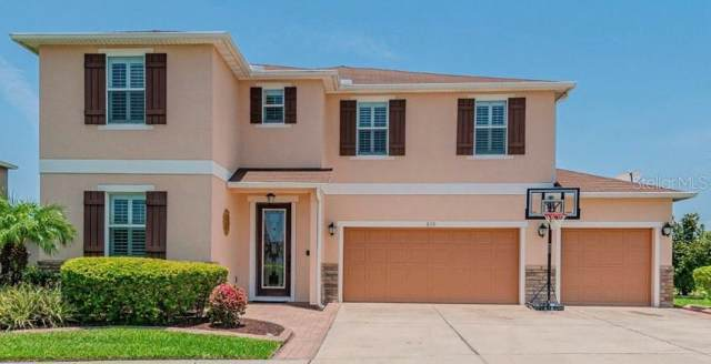 230 Star Shell Drive, Apollo Beach, FL 33572 (MLS #T3182800) :: Griffin Group