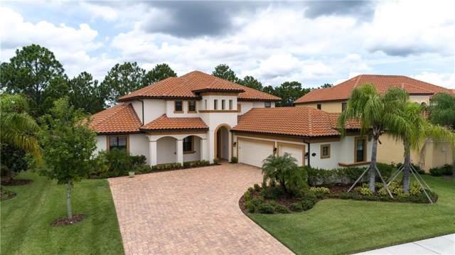 10584 Cory Lake Drive, Tampa, FL 33647 (MLS #T3191646) :: Team Bohannon Keller Williams, Tampa Properties