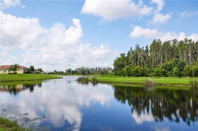15917 Amber Falls Drive, Wimauma, FL 33598 (MLS #T3195856) :: Delgado Home Team at Keller Williams