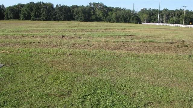 103 Alafia Estates Lane, Plant City, FL 33567 (MLS #T3199839) :: The Light Team