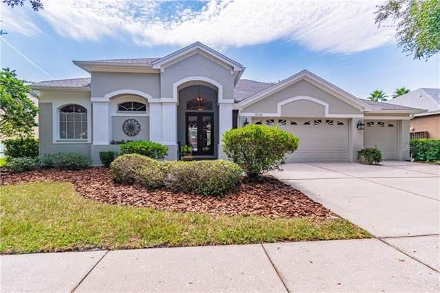 19120 Autumn Woods Avenue, Tampa, FL 33647 (MLS #T3200660) :: Team Bohannon Keller Williams, Tampa Properties