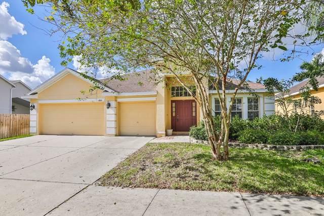 6806 Cromwell Garden Drive, Apollo Beach, FL 33572 (MLS #T3200721) :: Team Bohannon Keller Williams, Tampa Properties