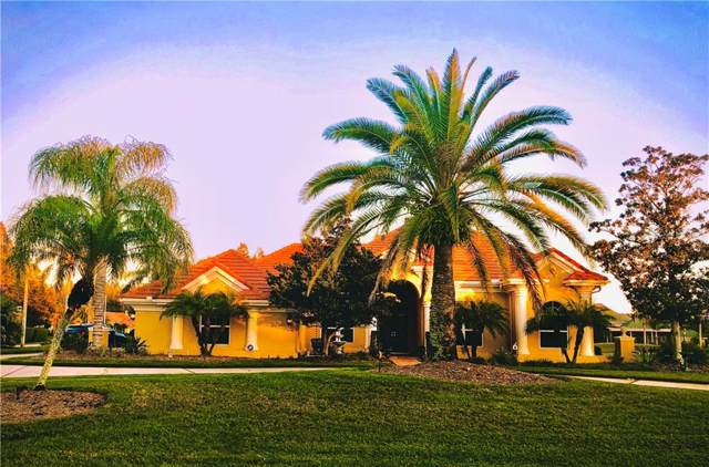 18655 Avenue Capri, Lutz, FL 33558 (MLS #T3211976) :: Bridge Realty Group