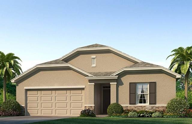 2516 Knight Island Drive, Brandon, FL 33511 (MLS #T3213956) :: Griffin Group