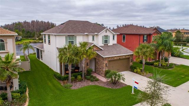 4035 Empoli Court, Wesley Chapel, FL 33543 (MLS #T3227360) :: Baird Realty Group