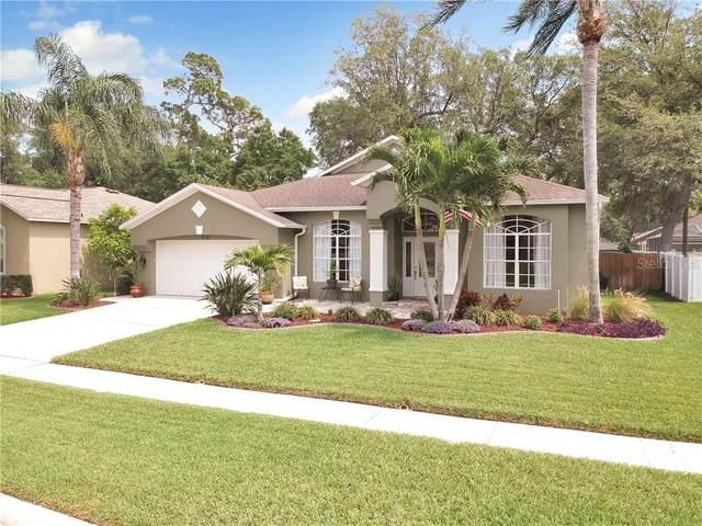 3710 Treeline Drive, Valrico, FL 33596 (MLS #T3233757) :: Medway Realty