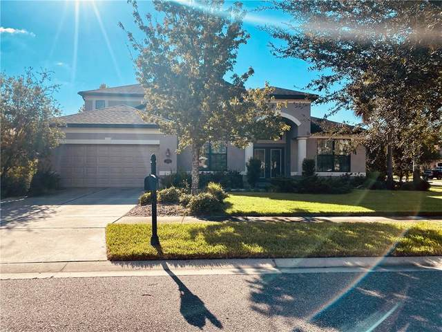 15624 Hampton Village Drive, Tampa, FL 33618 (MLS #T3241751) :: Alpha Equity Team