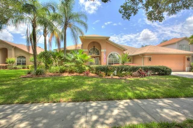 3523 Shadowood Drive, Valrico, FL 33596 (MLS #T3243235) :: Pristine Properties