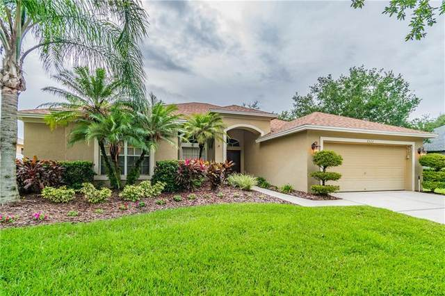 8522 Bramwell Way, Tampa, FL 33647 (MLS #T3243456) :: Icon Premium Realty