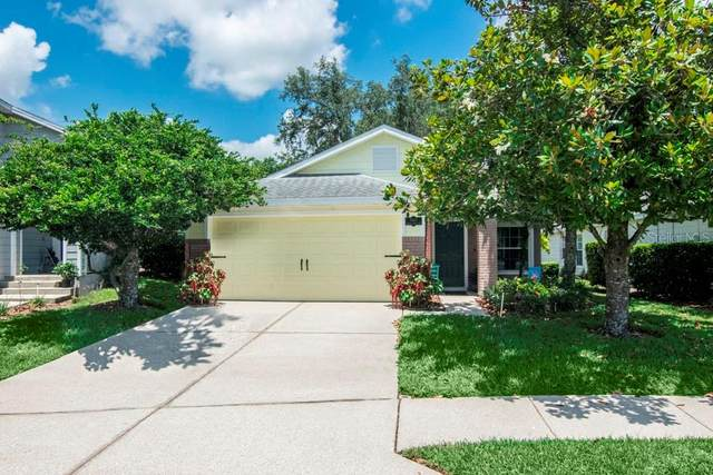 5168 Sterling Manor Drive, Tampa, FL 33647 (MLS #T3243853) :: Cartwright Realty