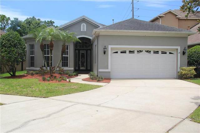9403 Greenpointe Drive, Tampa, FL 33626 (MLS #T3250018) :: Medway Realty