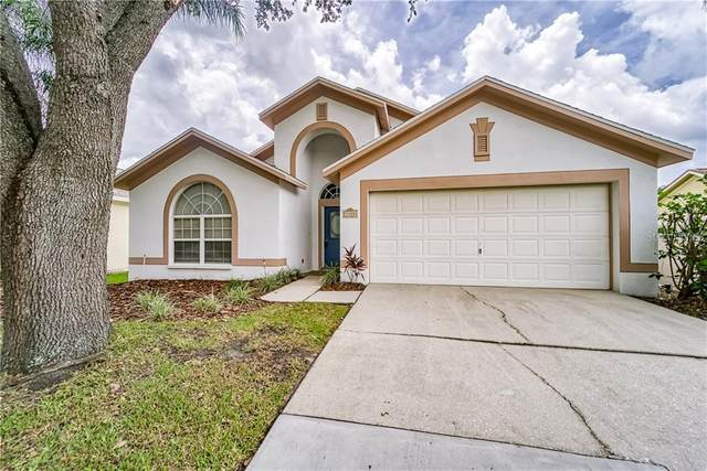 3308 Red Mulberry Court, Tampa, FL 33618 (MLS #T3251616) :: Team Bohannon Keller Williams, Tampa Properties