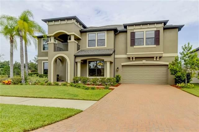 10702 Laurel Vista Way, Tampa, FL 33647 (MLS #T3253219) :: Dalton Wade Real Estate Group