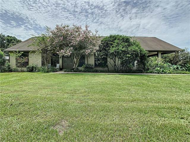 12606 Marion Lane, San Antonio, FL 33576 (MLS #T3257150) :: The Light Team