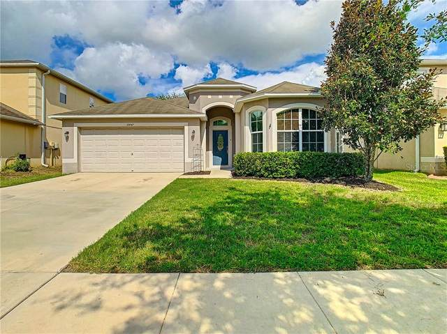 18447 Red Willow Way, Land O Lakes, FL 34638 (MLS #T3260958) :: Rabell Realty Group