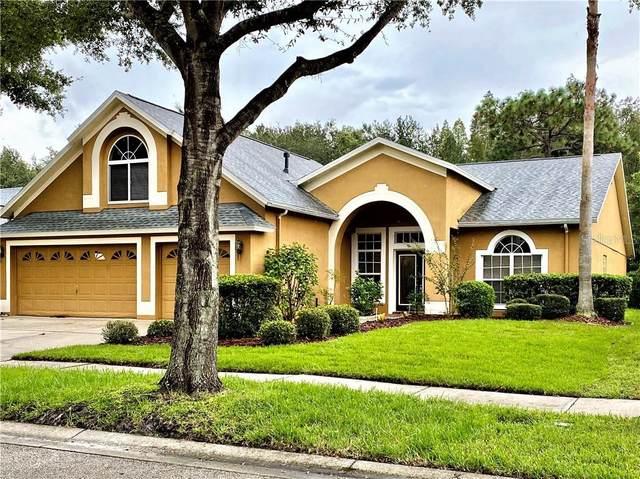 10217 Timberland Point Drive, Tampa, FL 33647 (MLS #T3263591) :: Team Bohannon Keller Williams, Tampa Properties