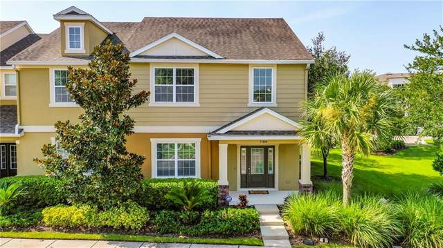 11644 Ecclesia Drive, Tampa, FL 33626 (MLS #T3263805) :: The Heidi Schrock Team