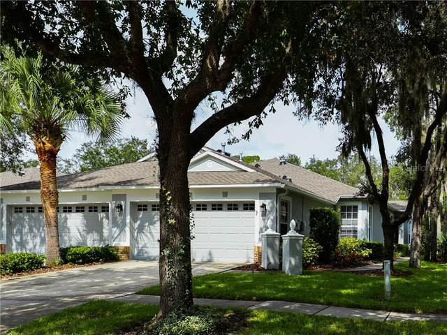 6019 Sandhill Ridge Drive, Lithia, FL 33547 (MLS #T3265000) :: Mark and Joni Coulter | Better Homes and Gardens