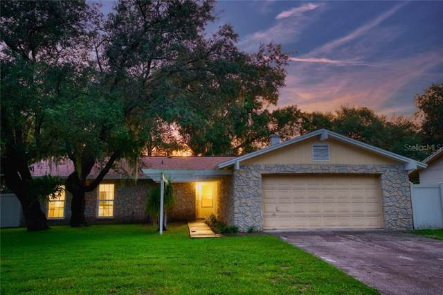 1810 Lakeview Drive, Brandon, FL 33511 (MLS #T3266039) :: Griffin Group