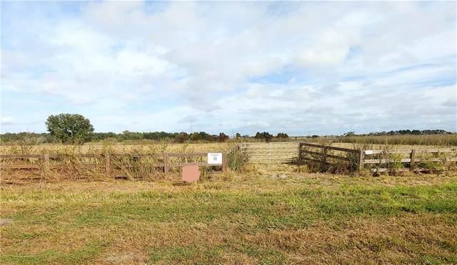 1700 Old Brewster Road, Fort Meade, FL 33841 (MLS #T3268434) :: Prestige Home Realty