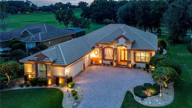 13115 Grand Traverse Drive, Dade City, FL 33525 (MLS #T3272254) :: Real Estate Chicks