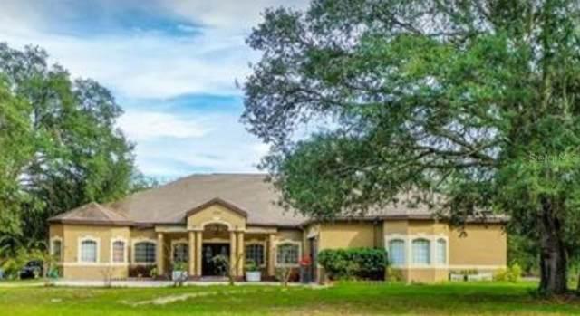 9224 Native Rock Drive, Webster, FL 33597 (MLS #T3275733) :: Everlane Realty