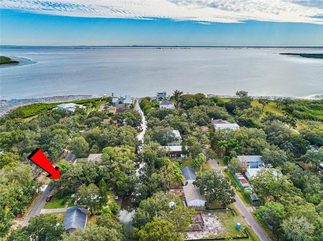 7420 Bay Drive, Tampa, FL 33635 (MLS #T3277328) :: Griffin Group