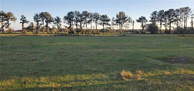 12633 Hobson Simmons Road, Lithia, FL 33547 (MLS #T3289303) :: The Robertson Real Estate Group