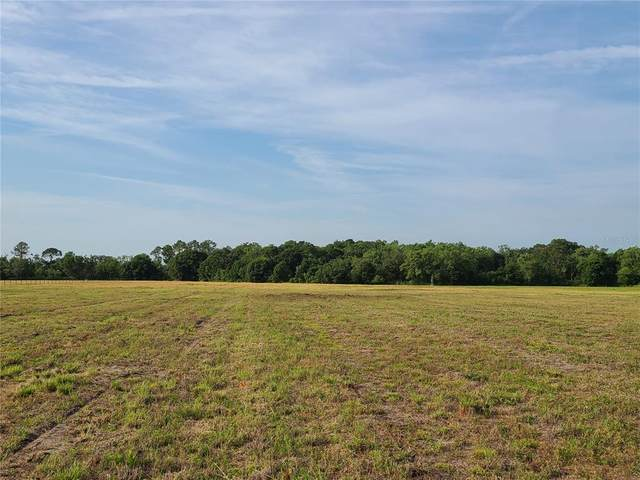 672 Highway, Lithia, FL 33547 (MLS #T3289604) :: The Robertson Real Estate Group