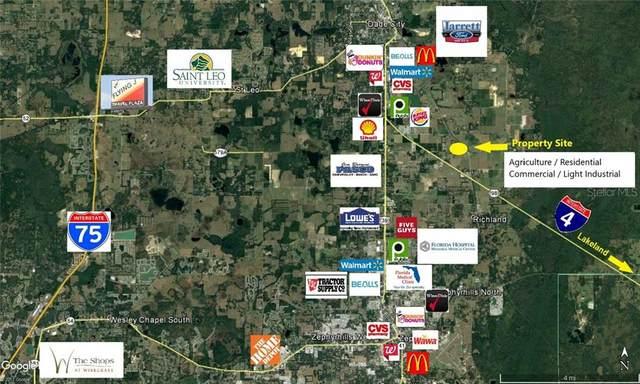 10651 Old Lakeland Highway, Dade City, FL 33525 (MLS #T3296819) :: Zarghami Group